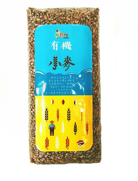 【田野仕】台灣有機小麥
